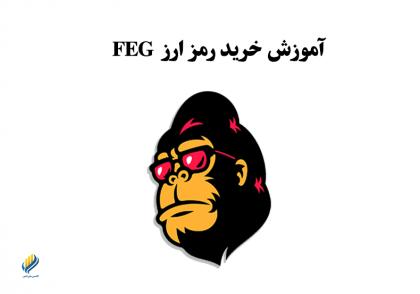 آموزش خرید رمزارز FEG